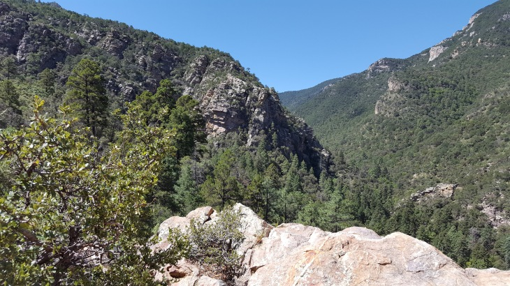 Ramsey Canyon