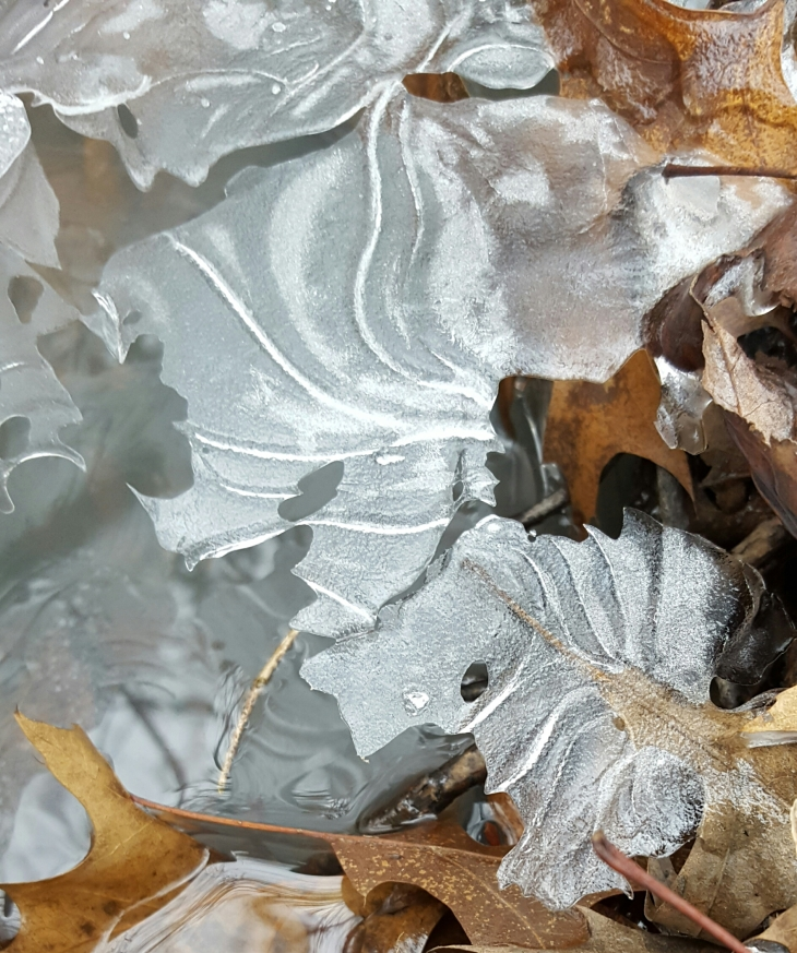 Pattern ice
